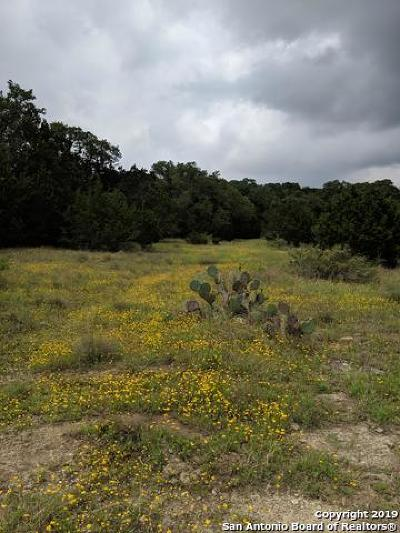 New Braunfels Residential Lots & Land New: 2046 Alsace