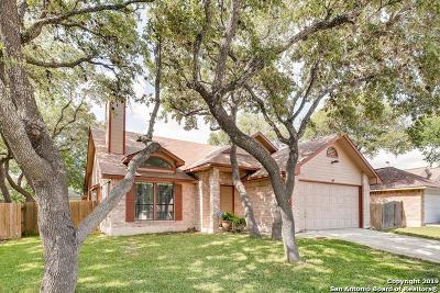 San Antonio Single Family Home New: 8915 Park Vista Dr