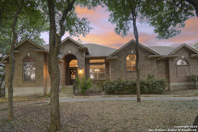 New Braunfels Single Family Home New: 468 Shady Hollow
