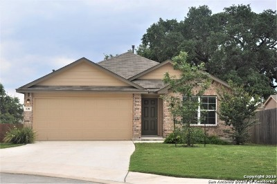 San Antonio Single Family Home New: 130 Marco Deer
