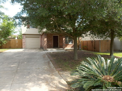 New Braunfels Single Family Home New: 3963 Trinity Trail
