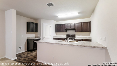 San Antonio Single Family Home New: 5903 Kendall Cove