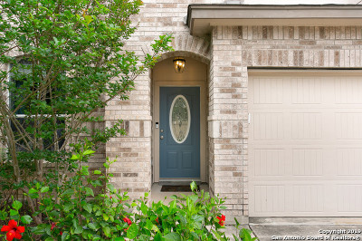 San Antonio Single Family Home New: 568 Perch Meadow