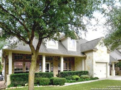 San Antonio Single Family Home New: 26002 Torena Loop
