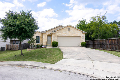 San Antonio Single Family Home New: 8003 Dyess Ft
