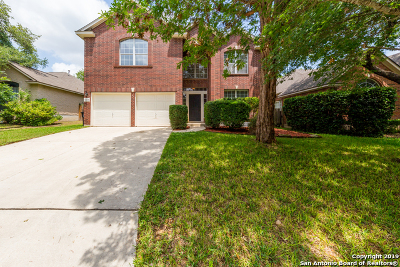 San Antonio Single Family Home New: 11118 Cedar Mtn