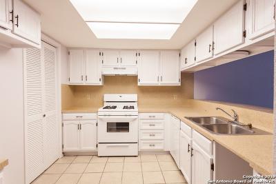 Austin Single Family Home Active Option: 4910 Barkbridge Trail