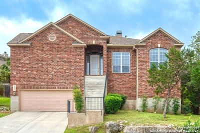 Helotes Single Family Home New: 8511 Magdalena Run