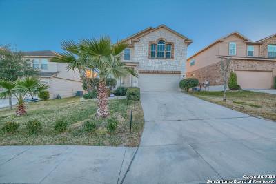 San Antonio Single Family Home New: 11524 Valley Gardens