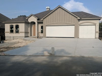 Fair Oaks Ranch Single Family Home New: 29002 Pfeiffers Gate