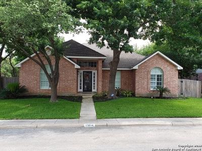 San Antonio Single Family Home New: 13814 Shavano Pt