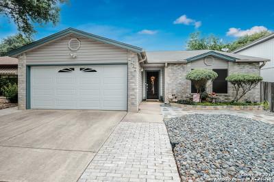 San Antonio Single Family Home New: 7643 Aspen Park Dr