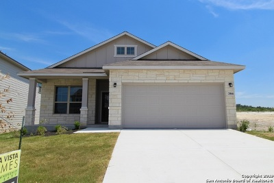 San Antonio TX Single Family Home New: $253,804