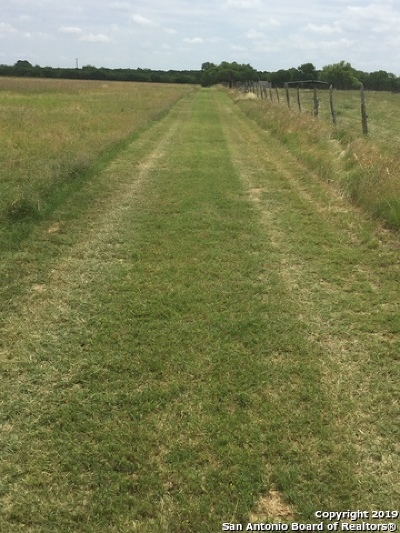 Farms and Ranches for Sale in San Antonio, TX