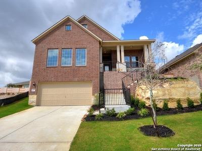 San Antonio Single Family Home New: 2019 Tillman Pa