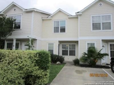 San Antonio Single Family Home New: 44 Autumn Pass