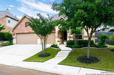 San Antonio Single Family Home New: 3839 Ox-Eye Daisy