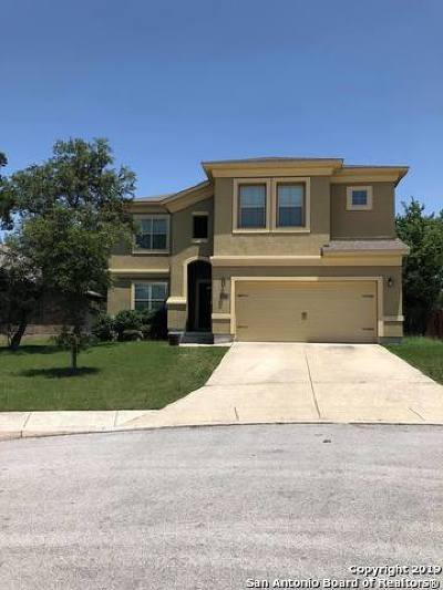 San Antonio Single Family Home New: 26102 Raven Feather