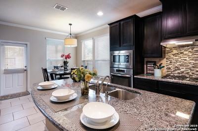 San Antonio Single Family Home New: 15307 Round Pond Pl