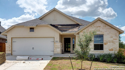 San Antonio Single Family Home New: 28461 Shailene Drive