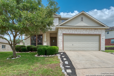 San Antonio Single Family Home New: 26148 Amber Sky