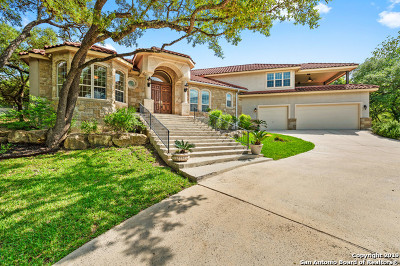 Fair Oaks Ranch Single Family Home New: 29430 No Le Hace Dr