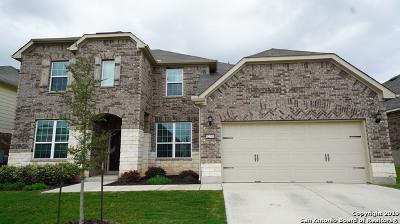 San Antonio Single Family Home New: 12799 Sabinal River