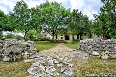 Boerne Single Family Home New: 223 Mulberry Ln