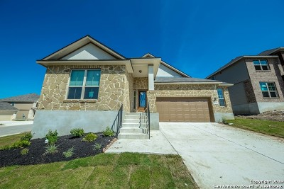 New Braunfels TX Single Family Home New: $309,942