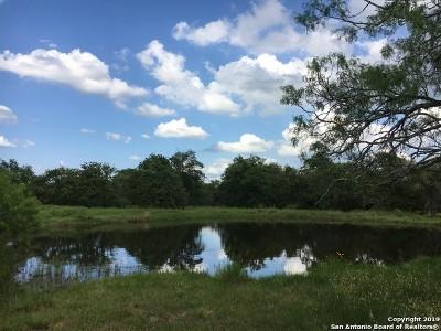 Guadalupe County Farm & Ranch Active Option: 00 Nockenut Rd & Lynn Rd