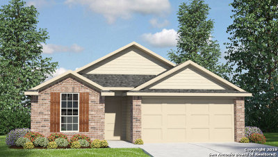 New Braunfels TX Single Family Home New: $229,850