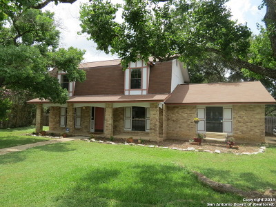 Bexar County Single Family Home New: 2902 Bee Cave St