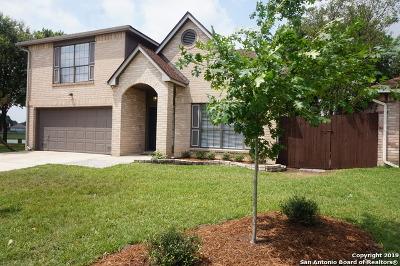 San Antonio Single Family Home New: 10878 Lake Path Dr