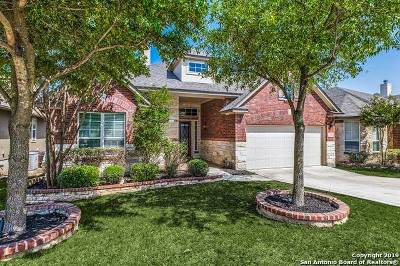Helotes Single Family Home New: 13310 Windmill Trace