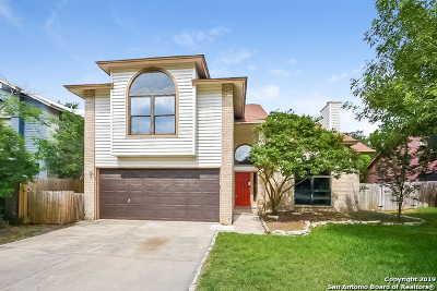 Bexar County Single Family Home New: 3407 Green Spring