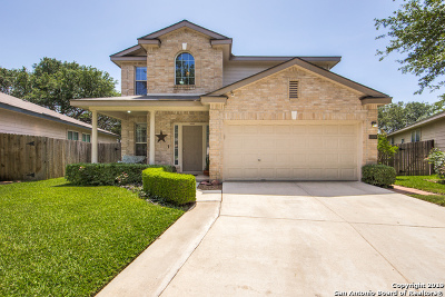Bexar County Single Family Home New: 15947 Drexel Run
