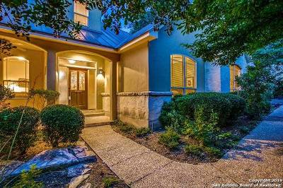 Alamo Heights Single Family Home For Sale: 207 Acacia St
