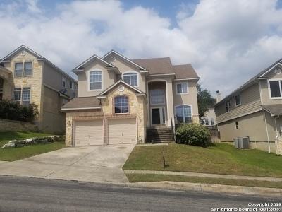 Stone Oak Single Family Home Active Option: 21210 Villa Valencia