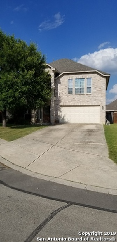 San Antonio Single Family Home New: 24430 Treaty Creek