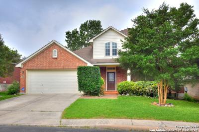 Stone Oak Single Family Home New: 21116 Pedregoso Ln