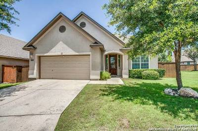 Single Family Home New: 3619 Willow Walk