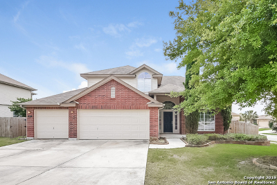 New Braunfels Single Family Home New: 537 Briscoe Dr