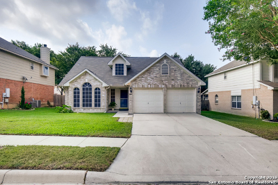 Schertz Single Family Home New: 1029 Sandy Ridge Circle