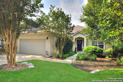 San Antonio Single Family Home New: 4710 Ridge Dove