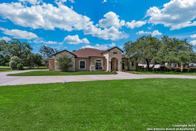 Pleasanton Single Family Home New: 1620 Strait Ln