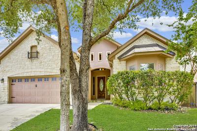 San Antonio TX Single Family Home New: $307,000