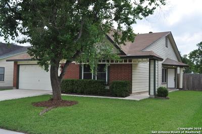 San Antonio TX Single Family Home New: $198,000