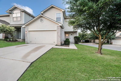 San Antonio Single Family Home New: 5535 Painter Green