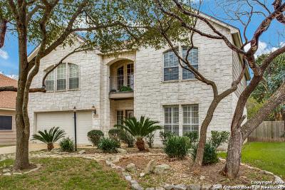 San Antonio TX Single Family Home New: $359,000