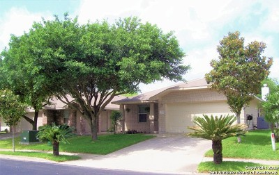 Leon Valley Single Family Home New: 6512 Sally Agee